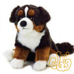 سگ 742099
