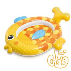 استخر ماهی طلایی 57111