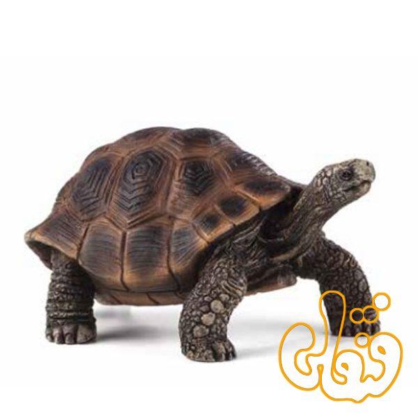 لاک پشت غول پیکر giant turtle 387259