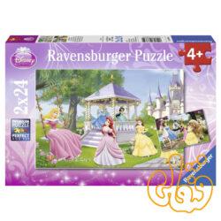 پازل پرنسسهای دلربا Enchanting Princesses 08865