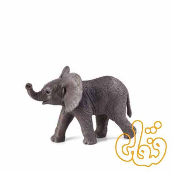 بچه فیل افریقایی African Elephant Calf 387002