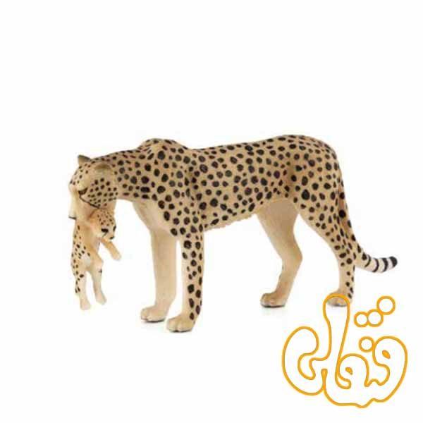 چیتا ماده با بچه Female Cheetah with Cub 387167