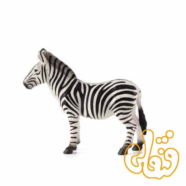 گوره خر Zebra 387169
