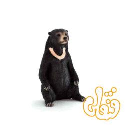 خرس sun bear 387173