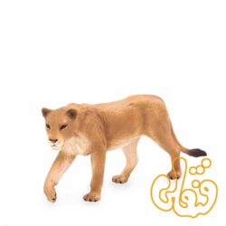شیر ماده Lioness 387175