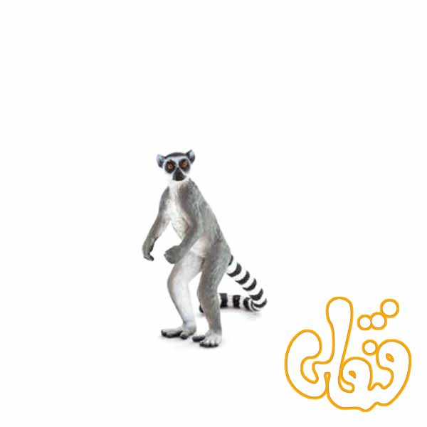 میمون لمور دم راه راه Ringtail Lemur 387177