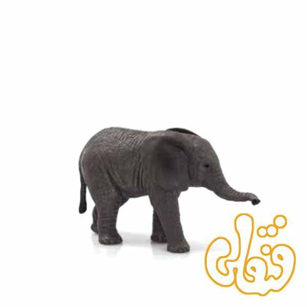 بچه فیل آفریقایی African Elephant Calf 387190