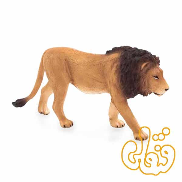 شیر نر Male Lion 387204