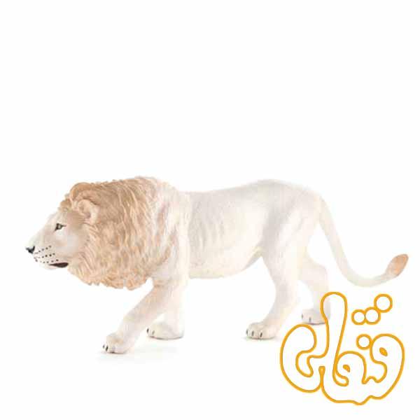 شیر نر سفید White Male Lion 387206