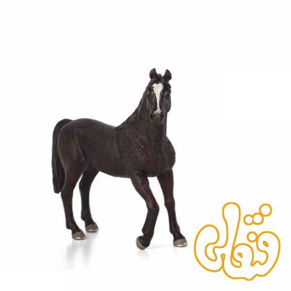 اسب شاهزاده عرب Arabian Stallion 387069