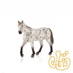 اسب شاهزاده اپالوسا Appaloosa Stallion 387108