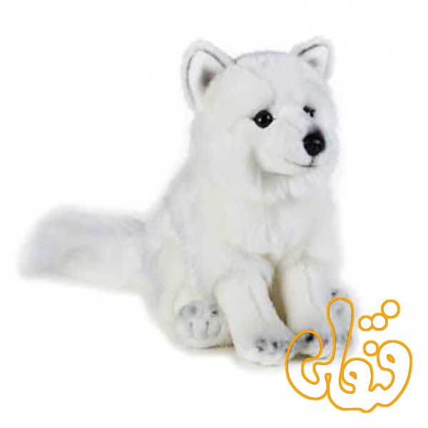 روباه قطبی 770728