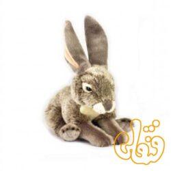 خرگوش 770815