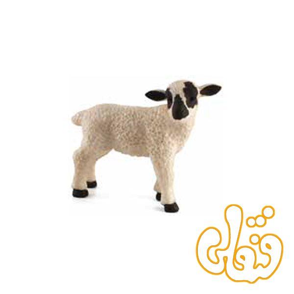 بره ایستاده صورت سیاه Black Faced Lamb Standing 387059
