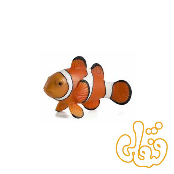 دلقک ماهی Clown Fish 387090