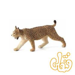 سیاه گوش ایبری Iberian Lynx 387064