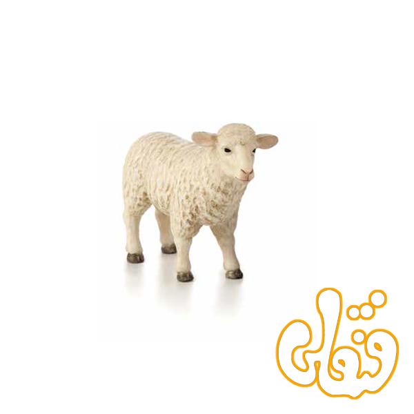 گوسفند میش ماده 387096 Sheep Ewe