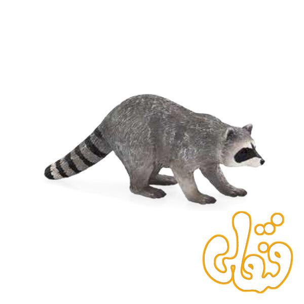 راکون Raccoon 387159