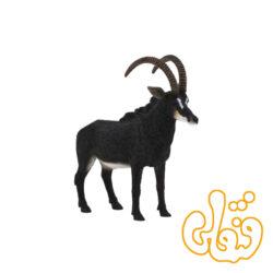 بز کوهی بزرگ سیاه Giant Sable Antelope 387145