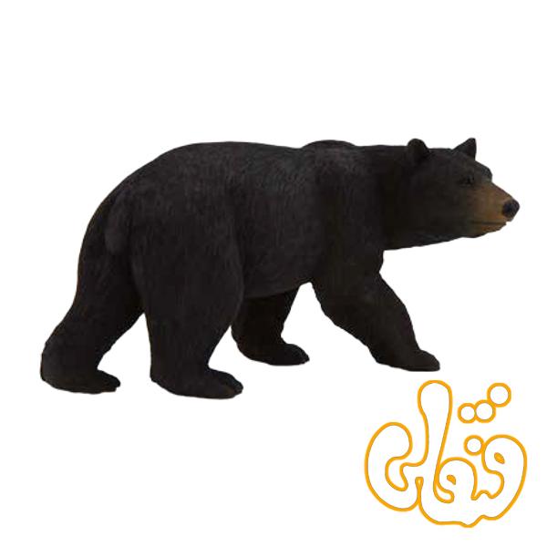 خرس سیاه آمریکایی American Black Bear 387112