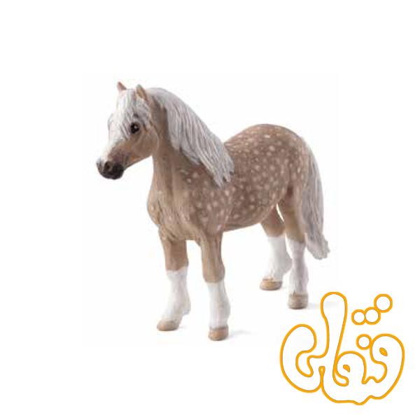 کره اسب ولز Welsh Pony 387282