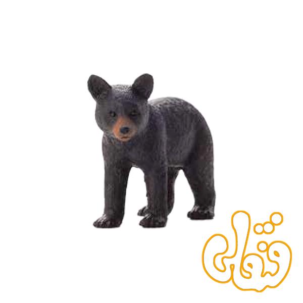 توله خرس سیاه Black Bear Cub 387287