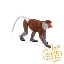میمون خرطوم دار Proboscis Monkey 387176