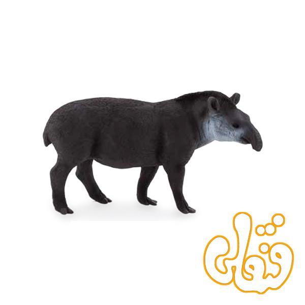 خوک خرطوم بلند برزیلی Brazilian Tapir 387178