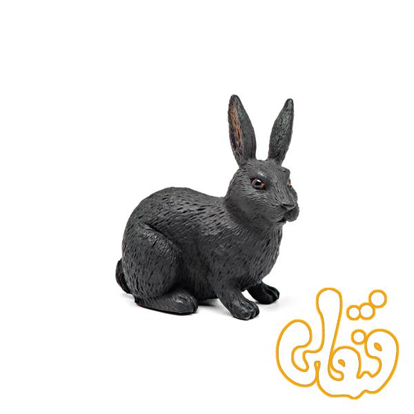 خرگوش سیاه 387029 Black Rabbit