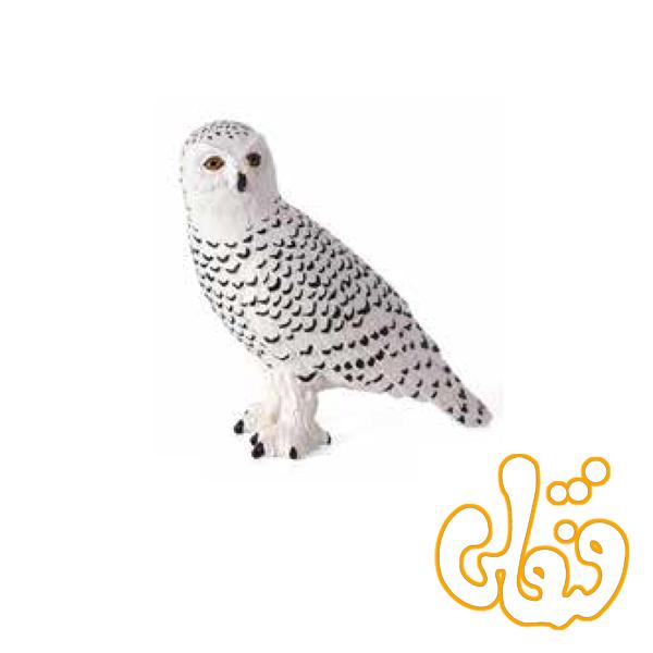 جغد برفی Snowy Owl 387201