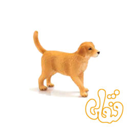 توله سگ زنده یاب طلایی Golden Retriever Puppy 387205