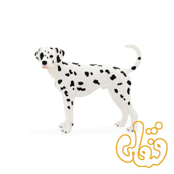 سگ دالماسی بزرگ Dalmatian 387248
