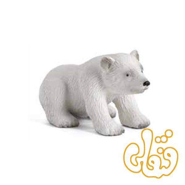 توله خرس قطبی نشسته Polar Bear Cub Sitting 387021