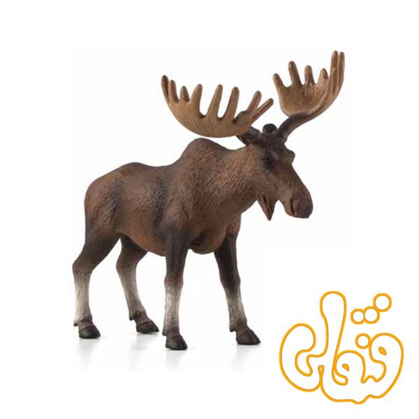 گوزن اروپای شمالی European Elk Moose 387023