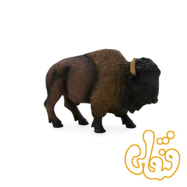 بوفالو کوهان دار آمریکایی American Bison Buffalo 387024