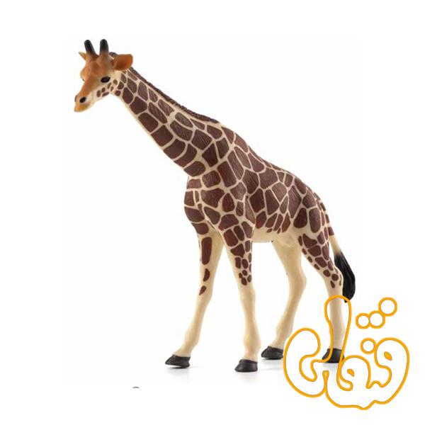 زرافه Giraffe 387006