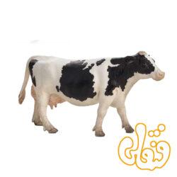 گاو شیرده سفید و سیاه هلشتاین Holstein Cow 387062