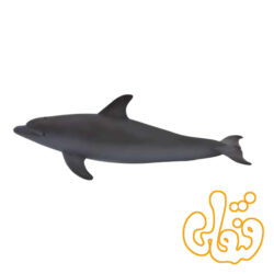 دلفین پوزه دار Bottlenose Dolphin 387118