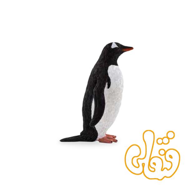 پنگوئن جنتو Gentoo Penguin 387184