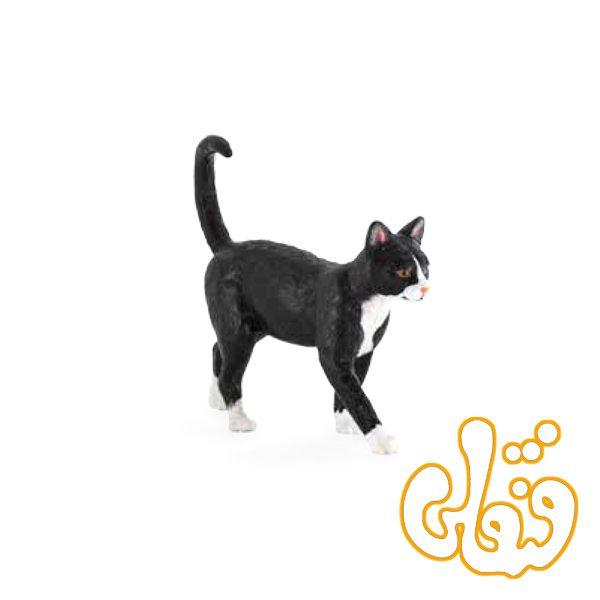 گربه اهلی Farm Yard Cat 387200