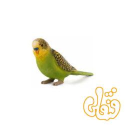 مرغ عشق سبز Budgerigar Green 387262