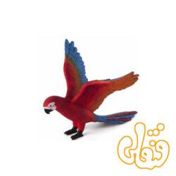 طوطی Parrot 387263