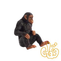 شامپانزه Chimpanzee 387265