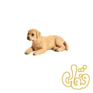 توله سگ لابرادور Labrador Puppy 387272