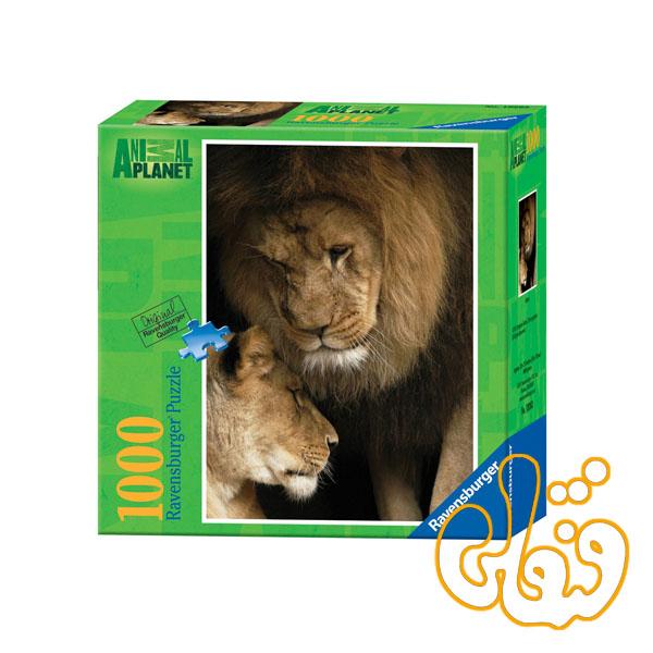 پازل رونزبرگر شیرها Lions 19263