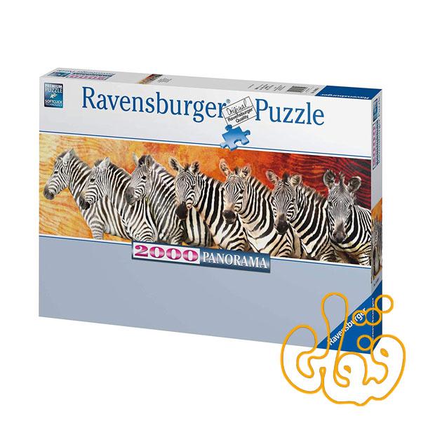 پازل رونزبرگر نمایش گورخرها Zebra Parade 16695