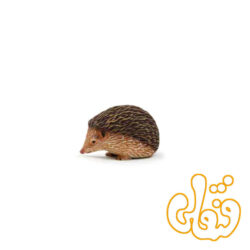 خارپشت Hedgehog 387035