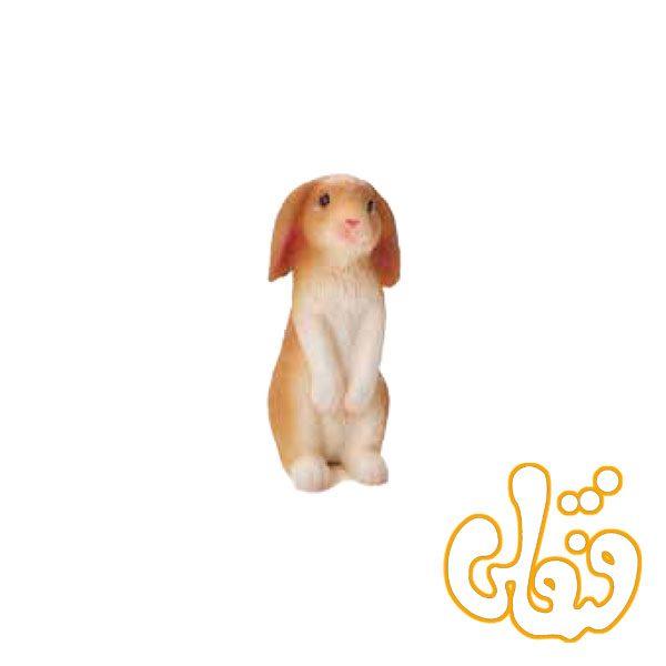 خرگوش نشسته Rabbit Sitting 387142