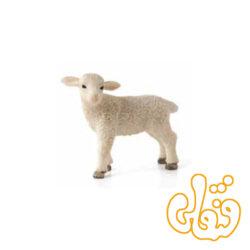 بره ایستاده Lamb Standing 387098