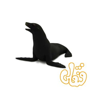 شیر دریایی کالیفرنیایی Californian Sea Lion 387115